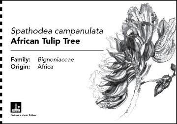 00352_kpwt_botanical_b5_plaques_fa2