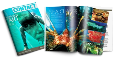 web-features-mags6